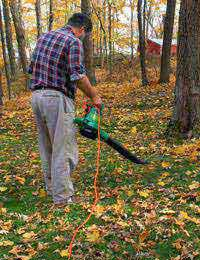 All About Leaf Blowers and Vacuums
