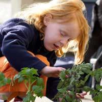 Get Kids Gardening Safely