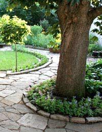 Garden Surfaces: Decking, Paving...