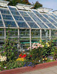 Greenhouse Safety