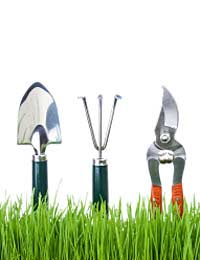 Equipment and Tools to Help Plant Out