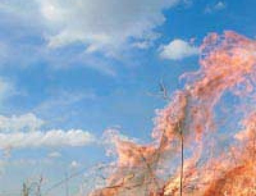 Grass Fire in Oxfordshire: Case Study