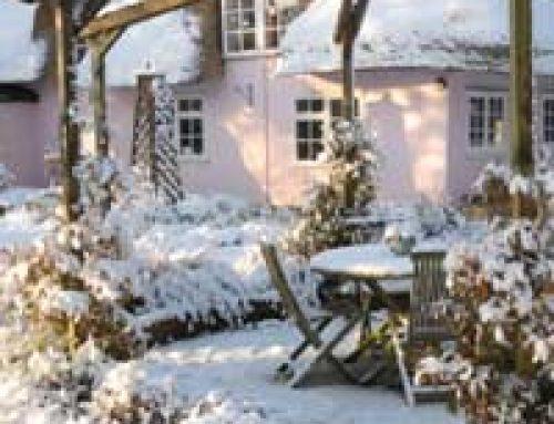 Garden Safety in the Snow