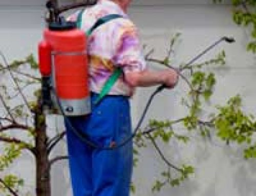 Gardening With Chemicals